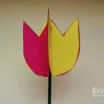 Bastelanleitung-3D-Blumen-Schritt10