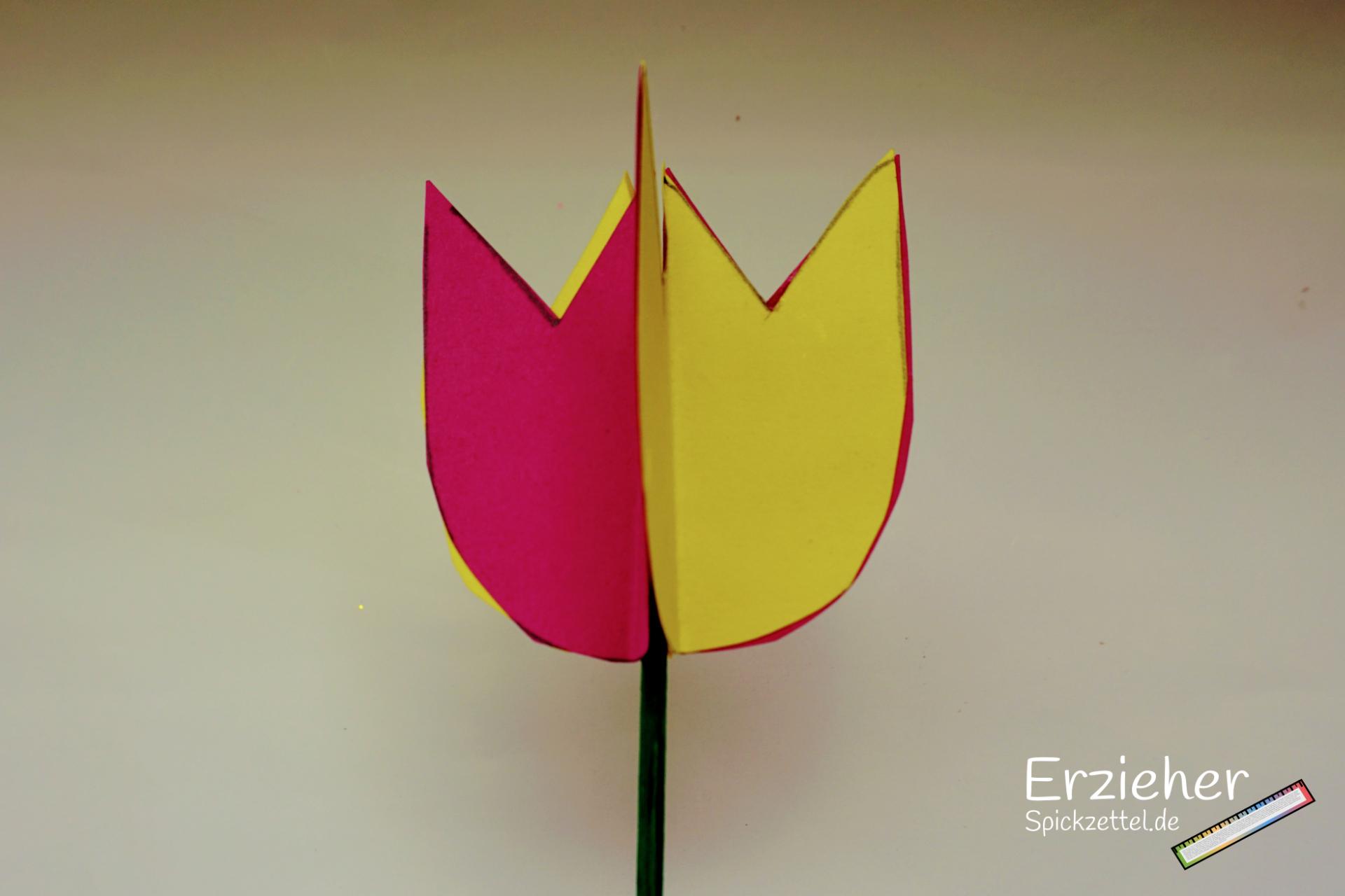 Kurzfristige Planung Wir Basteln 3d Blumen Erzieherspickzettelde