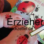 Marieinkäfer auf der Hand